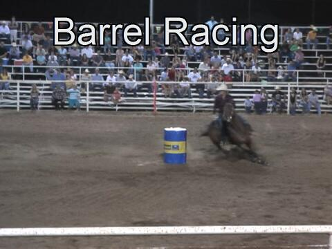 Auto Horse Racing Rodeo Bull Riding on Bull Riding