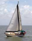 1981 Cape Dory 33 sailboat