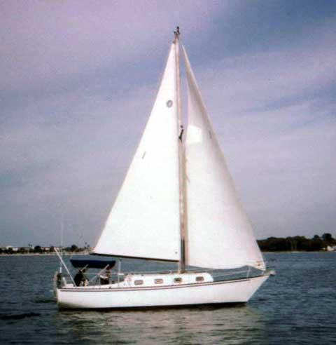 Navigator 33