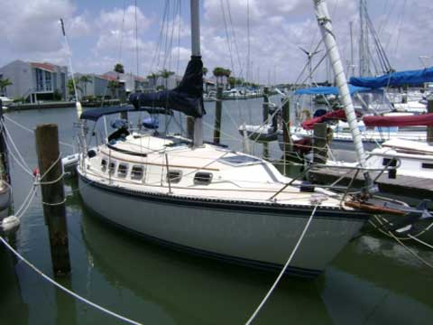 Newport 33