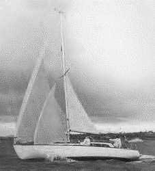 1969 New Zealand 37
