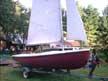 Rebel 16 sailboats