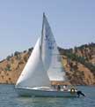 Venture 224 sailboats