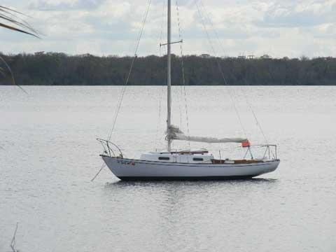 Allied Greenwich 24, 1971, Palatka, Florida, (St Johns River),  sailboat