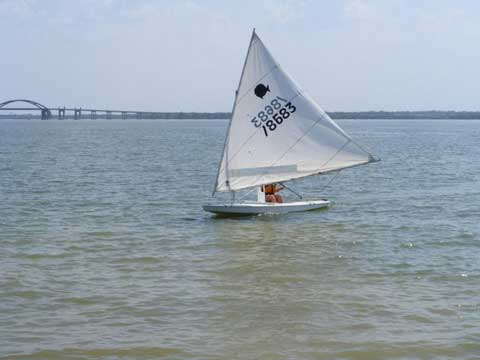 Sunfish, 2005 sailboat