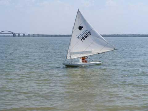 Sunfish, 2005 sailboat