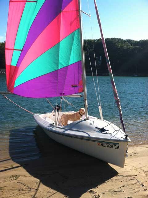 Catalina Capri 16.5, 1995, Holland, Michigan sailboat