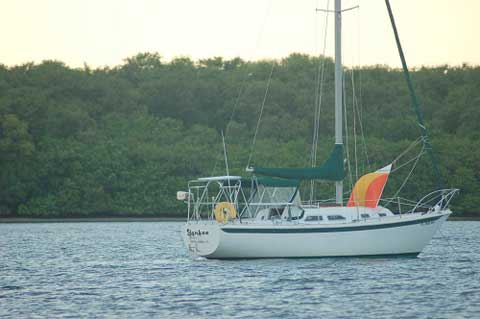 Ericson 29 1976 Tampa Florida Sailboat For Sale From