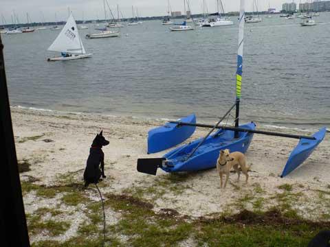 Two Windrider Tangos, 2011 sailboat