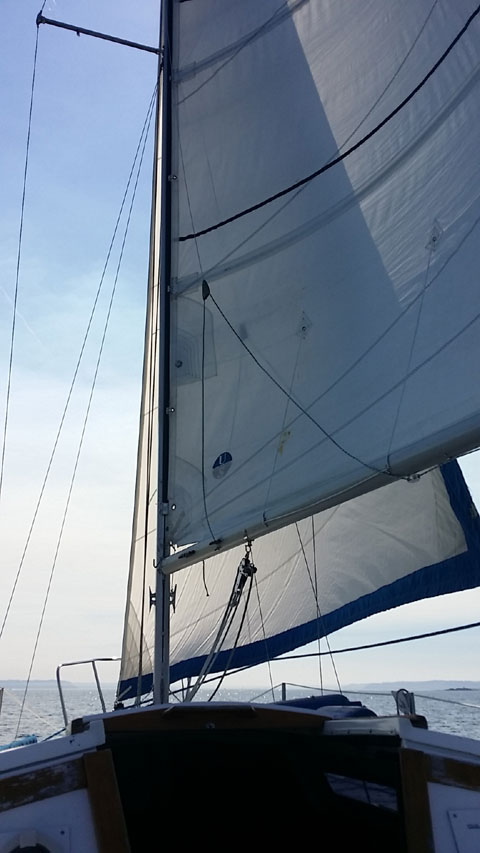 Catalina 25 Wing Keel, 1984 sailboat