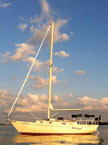 1987 Hinterhoeller Niagara 35 Encore, sailboat