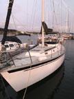 1981 Watkins 36 sailboat