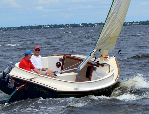 Alerion Express 19 Catboat, 2001 sailboat