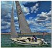 1987 Laguna 22 sailboat