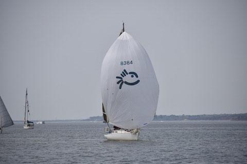 Olson 30, 1980 sailboat