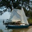 1973 American 16 sailboat