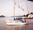 Annapolis sailboats