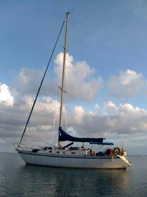 Canadian Sailcraft 36