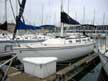 1984 Catalina 36 sailboat