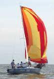 Capri 25 sailboats
