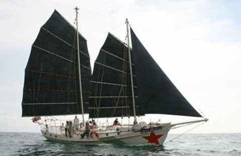Colvin Gazelle 42 yacht for sale