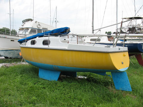 Kingfisher 22
